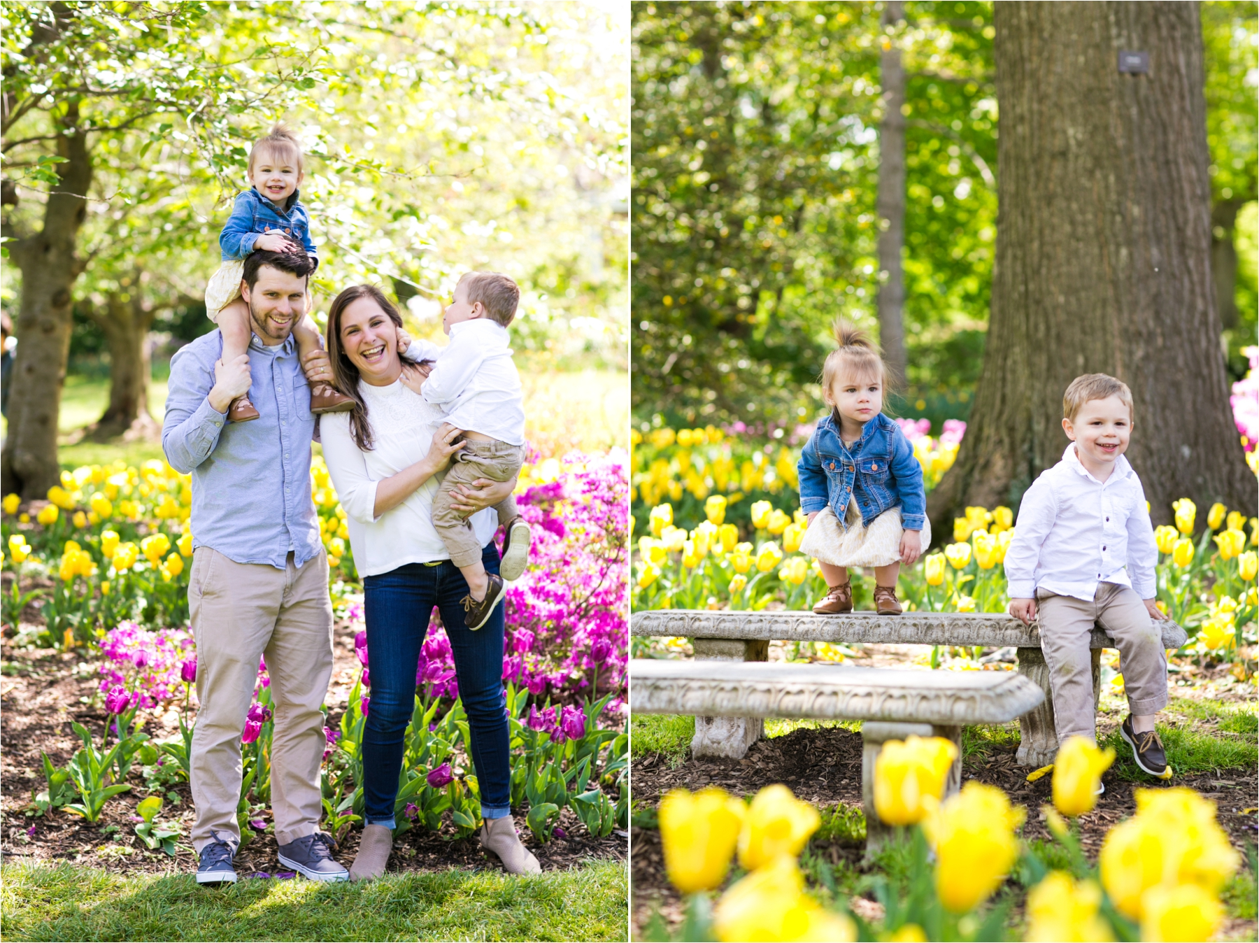 Sherwood Tulip Gardens : Spring Mini Sessions